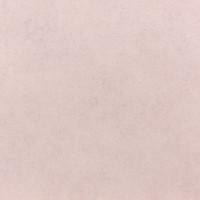 467161 Обои Rasch Vincenza