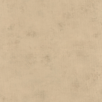 63621280 Обои Caselio Telas
