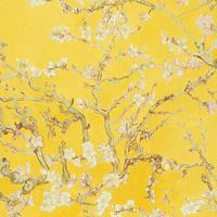 17143 Van Gogh 2