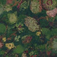 220001 Van Gogh 2