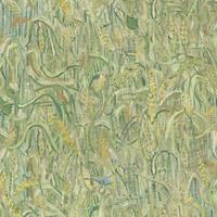 220050 Van Gogh 2