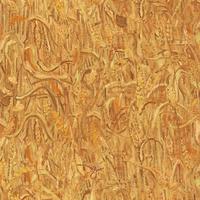 220051 Van Gogh 2