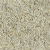220053 Van Gogh 2