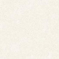ER60104-02  Обои Эрисманн Mystery