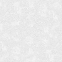 ER60104-03  Обои Эрисманн Mystery