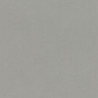 527025 Обои Rasch Crispy Paper