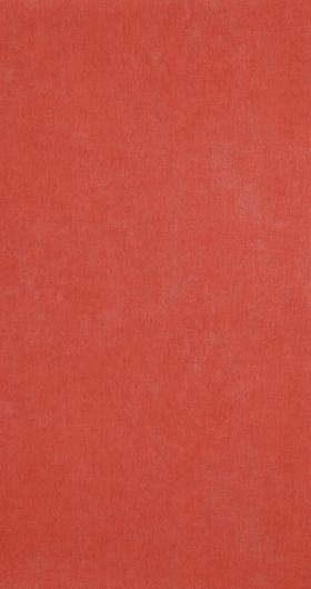 46016 Bn International Color Stories